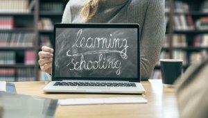 Кто такой технический администратор онлайн-школы
